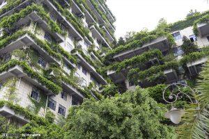 tall-buildings-1602084 1200 lic