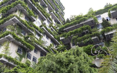 Green city's