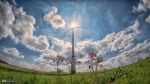 agriculture-alternative-alternative-energy-414886 1200 lic